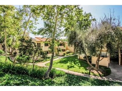 Agoura Hills Condo/Townhouse For Sale: 28947 Thousand Oaks Boulevard #232