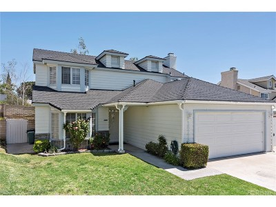 Canyon Country Single Family Home For Sale: 28779 Winterdale Drive