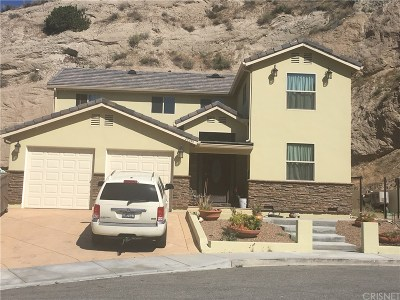 Canyon Country Single Family Home For Sale: 29345 Melia Way