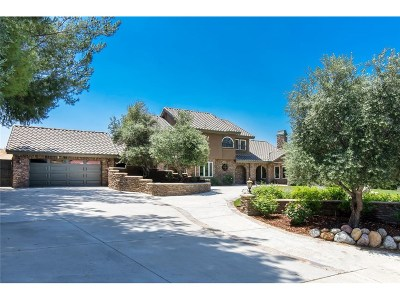 Saugus Single Family Home For Sale: 21948 Parvin Drive