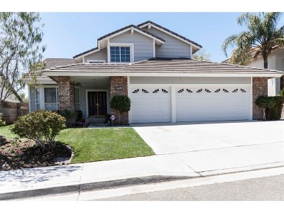 Canyon Country Single Family Home For Sale: 14410 Grandifloras Road
