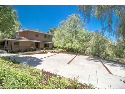 Woodland Hills Single Family Home For Sale: 22836 Macfarlane Drive