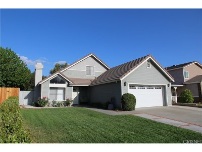 Castaic Single Family Home For Sale: 27620 Buckskin Drive