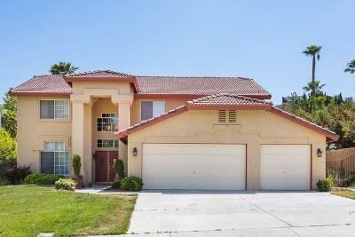 Palmdale Single Family Home For Sale: 7230 Ojai Drive