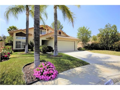 Saugus Single Family Home For Sale: 28359 Easton Lane