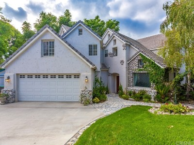Newhall Single Family Home For Sale: 24361 Valley Street
