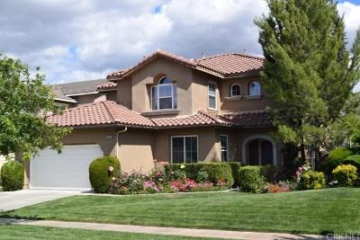 Stevenson Ranch Single Family Home For Sale: 25168 Huston Street