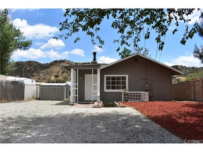 Canyon Country Single Family Home For Sale: 16646 Gazeley Street