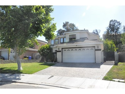 Castaic Single Family Home For Sale: 27861 Villa Canyon Road