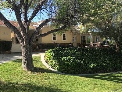 Saugus Single Family Home For Sale: 22506 Barbacoa Drive