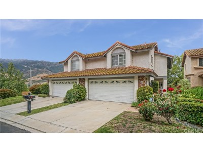 Agoura Hills Single Family Home For Sale: 30106 Diana Court