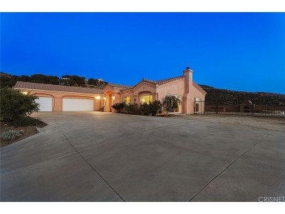 Agua Dulce Single Family Home For Sale: 35149 Penman Road
