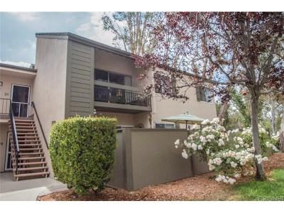 Valencia Condo/Townhouse For Sale: 24431 Trevino Drive #V10