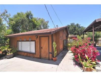 Calabasas Single Family Home For Sale: 3924 Black Bird Way