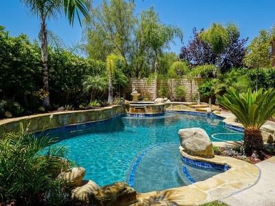 Stevenson Ranch Single Family Home For Sale: 25825 Meadow Lane