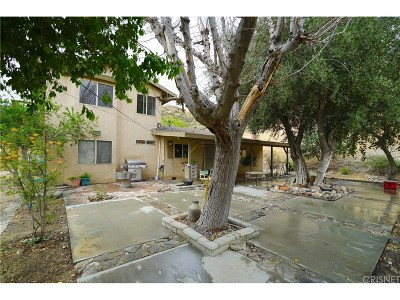 Canyon Country Single Family Home For Sale: 16968 Sierra Highway