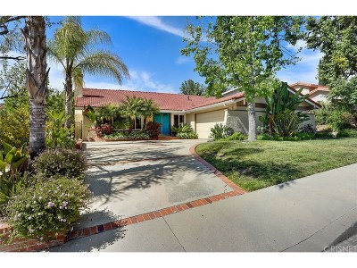 Agoura Hills Single Family Home For Sale: 28727 Aries Street