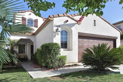 Castaic Single Family Home For Sale: 27652 Elk Ridge Road