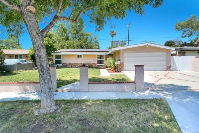 Canyon Country Single Family Home For Sale: 19025 Delight Street