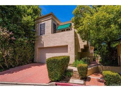 Calabasas Single Family Home For Sale: 4397 Park Paloma