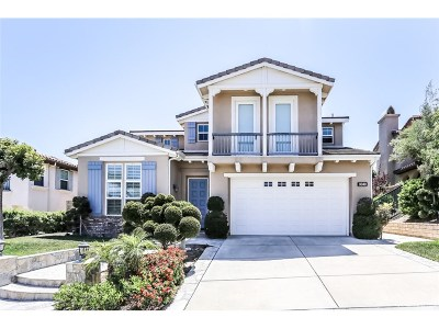 Simi Valley Single Family Home For Sale: 3049 Ziron Avenue