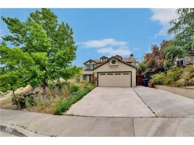 Castaic Single Family Home For Sale: 28742 Meadowgrass Drive