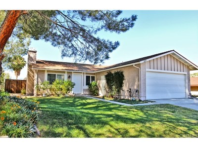 Castaic Single Family Home For Sale: 28011 Nares Drive