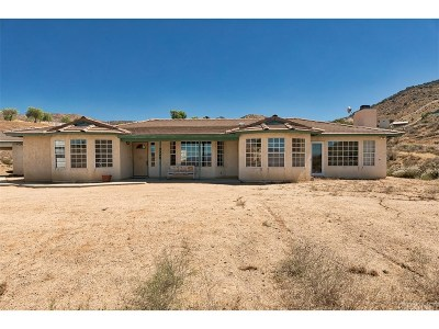 Acton Single Family Home For Sale: 4340 Pelona Canyon Road