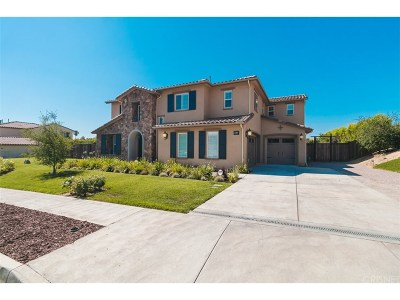 Chatsworth Single Family Home For Sale: 9615 Baden Avenue