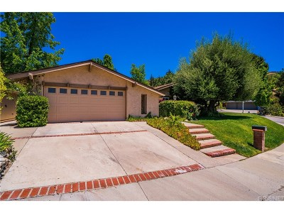Agoura Hills Single Family Home For Sale: 4004 Joelton Drive