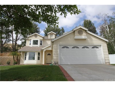 Castaic Single Family Home For Sale: 28136 Windy Way