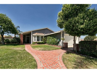 Castaic Single Family Home For Sale: 28021 Drywell Circle