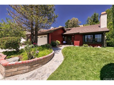 Canyon Country Single Family Home For Sale: 28123 Eagle Peak Avenue