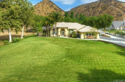 Saugus Single Family Home For Sale: 30315 North Quail Trails