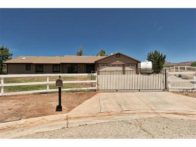 Acton Single Family Home For Sale: 32895 Chantada Avenue