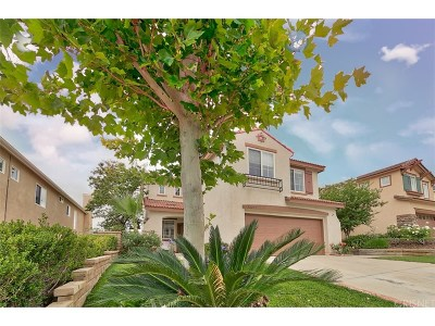 Castaic Single Family Home For Sale: 32231 Big Oak Lane