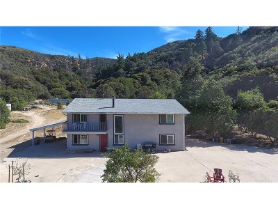 Lake Hughes Single Family Home For Sale: 19350 Pine Canyon Road