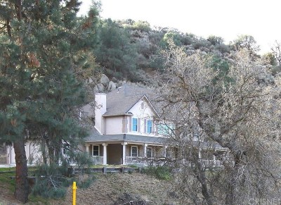Tehachapi Single Family Home For Sale: 26250 Cumberland Road