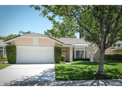 Valencia Single Family Home For Sale: 27258 Norwood Place