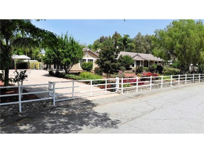 Castaic Single Family Home For Sale: 29320 Hasley Canyon Road