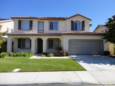 Valencia Single Family Home For Sale: 24036 Via Vista