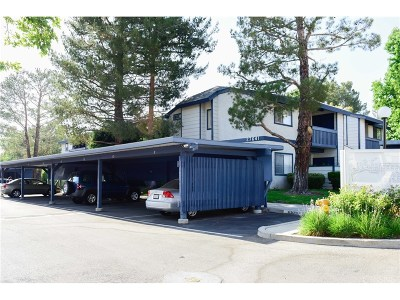 Saugus Condo/Townhouse For Sale: 27641 Susan Beth Way #i