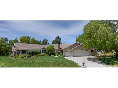Canyon Country Single Family Home For Sale: 15405 Saddleback Road