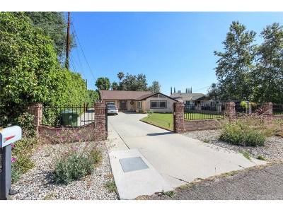 Woodland Hills Single Family Home For Sale: 23105 Dolorosa Street