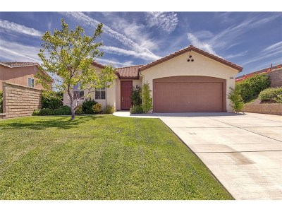 Castaic Single Family Home For Sale: 28036 Alton Way