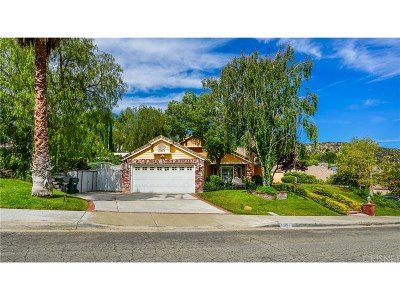 Castaic Single Family Home For Sale: 31207 Quail Valley Road