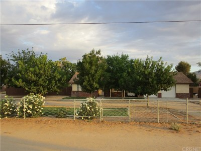 Palmdale Single Family Home For Sale: 2052 West Avenue M12