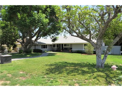 Northridge Single Family Home For Sale: 19466 Merridy Street