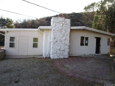 Lake Hughes Single Family Home For Sale: 43351 Lake Hughes Road