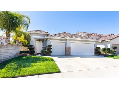 Saugus Single Family Home For Sale: 22812 Raintree Lane